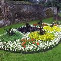 Downham Market in Bloom